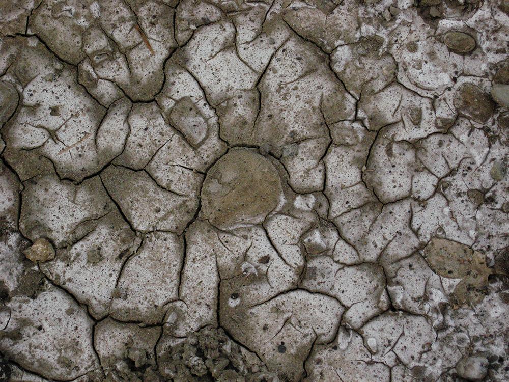 Drought (AZART 00011)