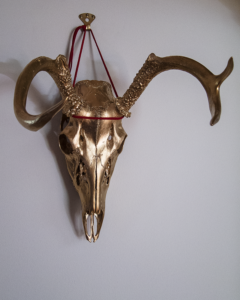 Golden Deer Skull