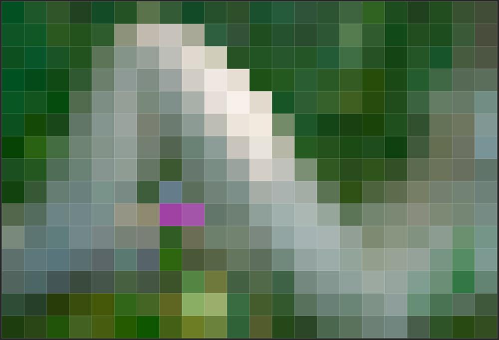 PXXL06 (AZART 00037)